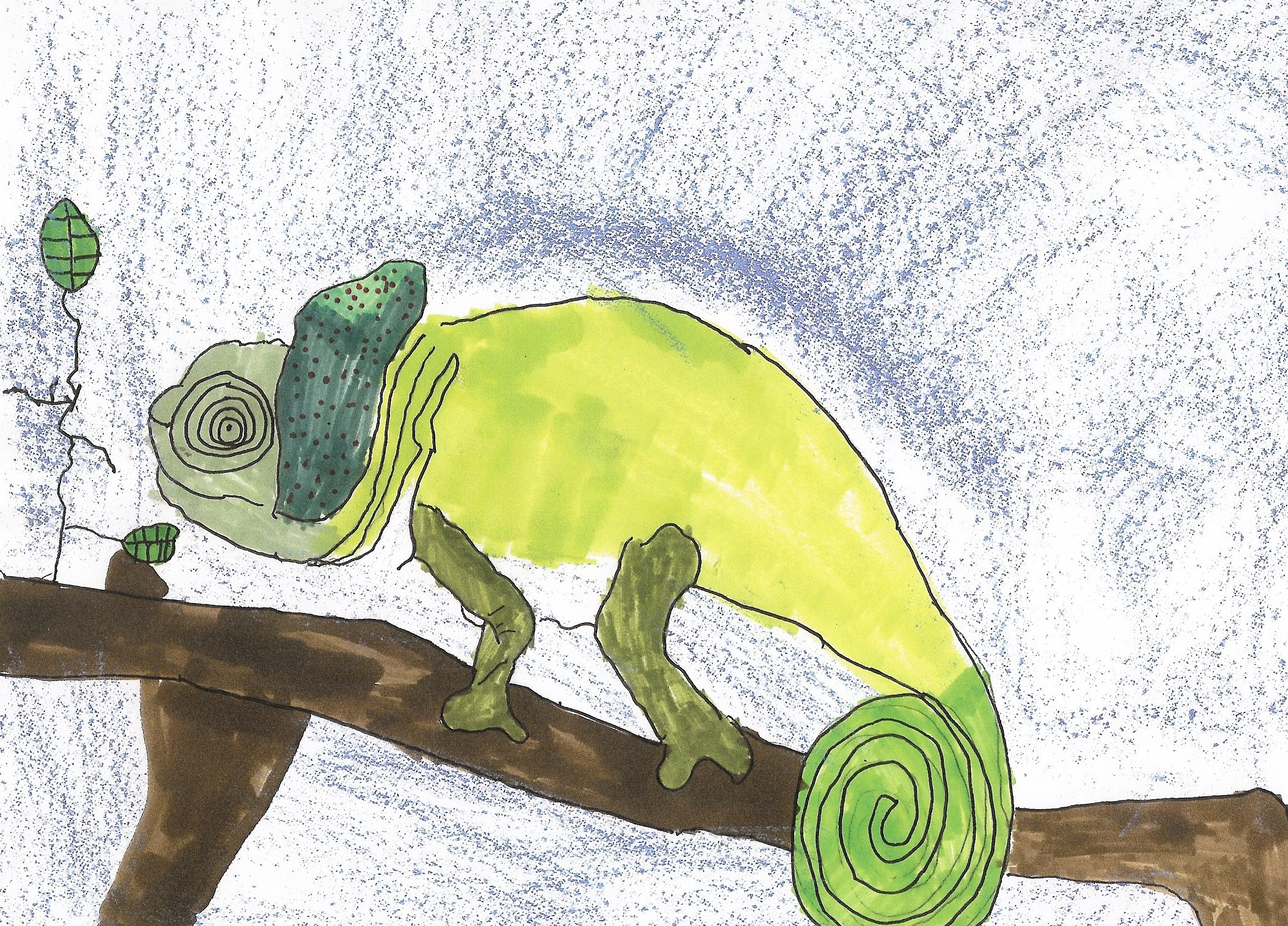 Drawings from 7 year olds | Corona Monart